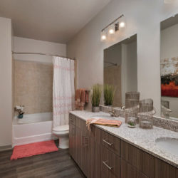 The District Lofts, Bathroom