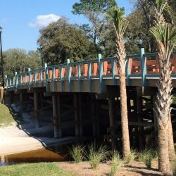 Tapestry Citrus Park in Tampa, FL