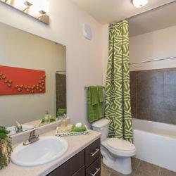 Tattersall Chesapeake, VA bathroom