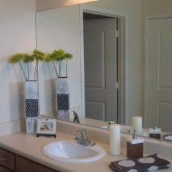 Bathroom - Tapestry Park Chesapeake